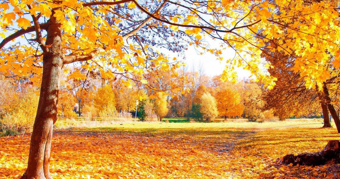 6 propositions pour votre automne sur le Lac de Garde
